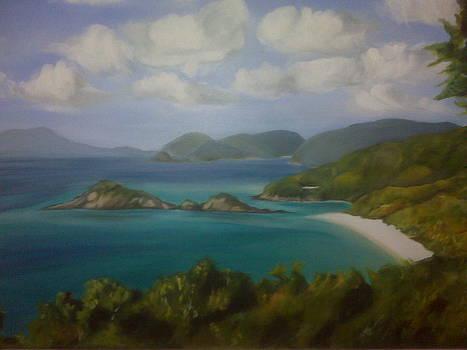 Trunk Bay by Barbara Ruzzene