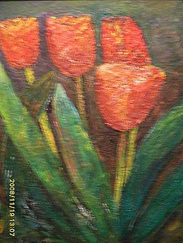 Tulip by Ilona Pincse