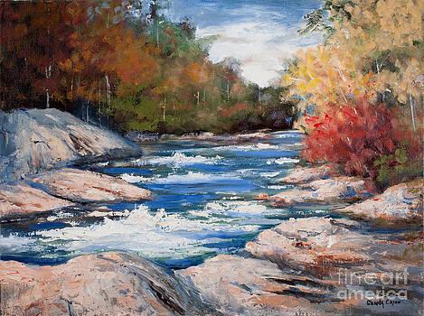 Tumbling Waters by Glenda Cason