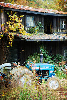 Turquoise Tractor by Cecile Brion
