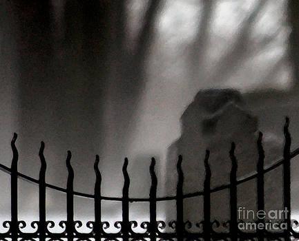 Linda Knorr Shafer - Twilight Beyond Grace