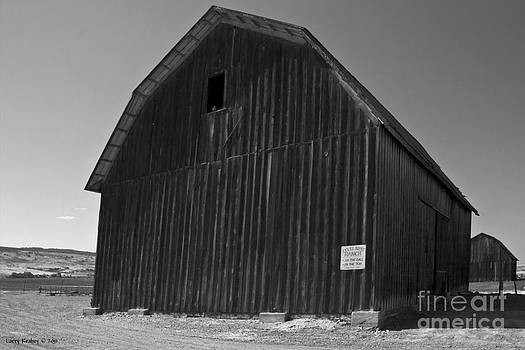 Twin Barns by Larry Keahey