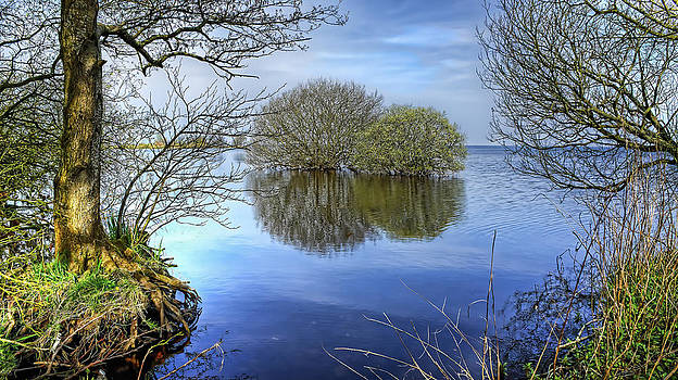 Two Watery Trees  by Kim Shatwell-Irishphotographer