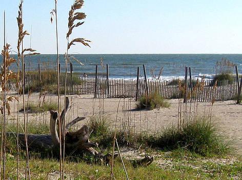 Tybee Island Beach by Juliana  Blessington