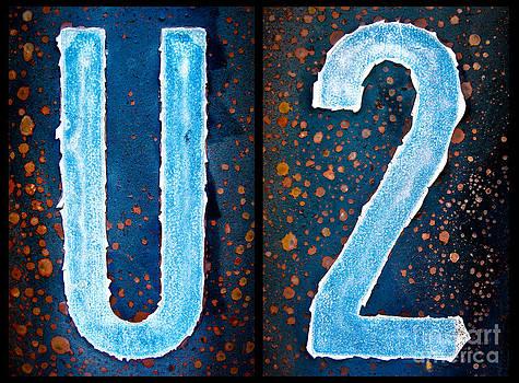 U2 by Jay Taylor