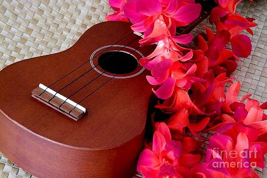 Mary Deal - Ukulele and Red Flower Lei