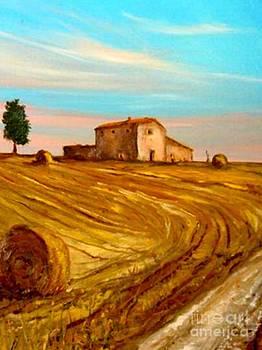 un casolare in Toscana by Sandro  Mulinacci