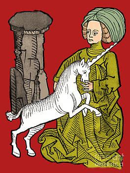 Science Source - Unicornus Varius 1491