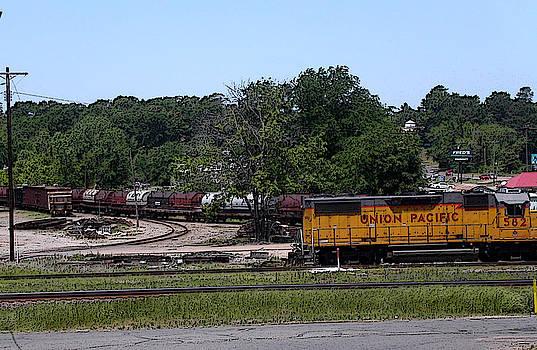 Anne Cameron Cutri - Union Pacific Rail Station