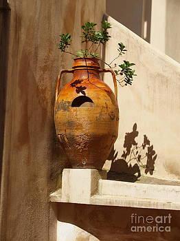 Urna d'Italia by Joyce Hutchinson