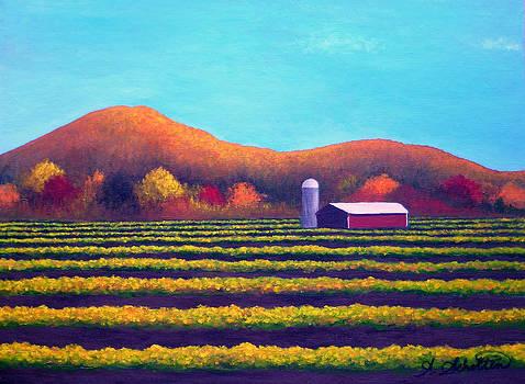 Harvest Valley of Abundance by Amy Scholten