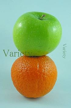 Variety by Tingy Wende