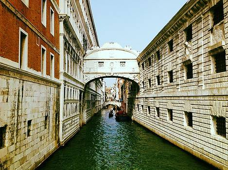 Venice by Shelley Smith