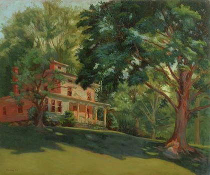 Victorian Homestead by Bruce Zboray