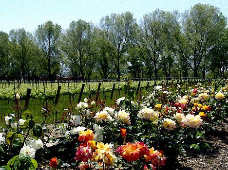 Kurt Van Wagner - View from Bridlewood Vineyards