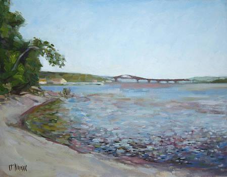 View North to Newburgh Beacon Bridge by William Noonan