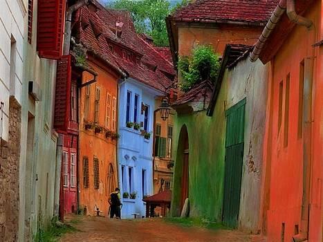 Village Viuw by Miu Dan Popa