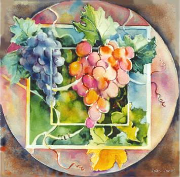 Joan  Jones - Vineyard