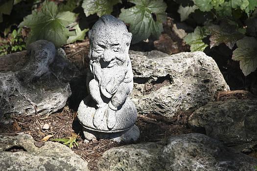 Teresa Mucha - Vintage Winking Garden Gnome
