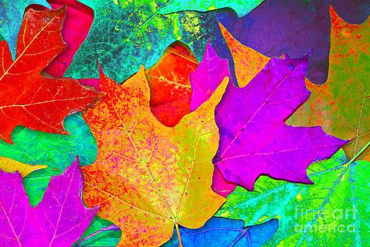 Vivid Leaves 1 by Ginny Gaura