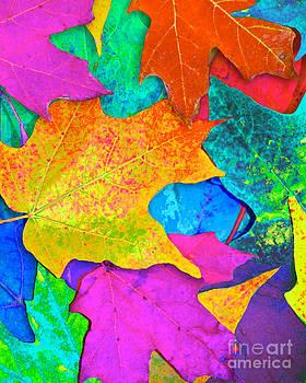 Vivid Leaves 3 by Ginny Gaura