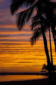 Waikiki Sunset by Jen Morrison