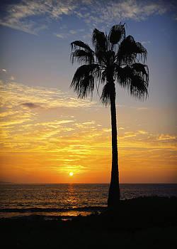 Wailea Sunset by Jen Morrison