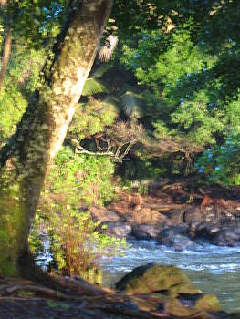 Wailuku River Spring by Ron Holiday Broomell