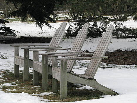 Waiting for Spring by Sheila Rodgers
