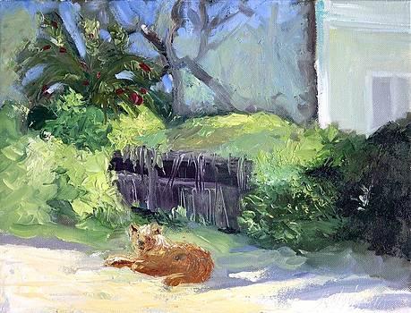 Waiting by Sheila Wedegis