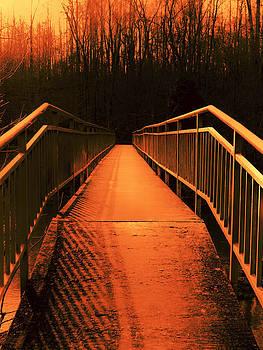 Walk of Fire by Julian Bralley