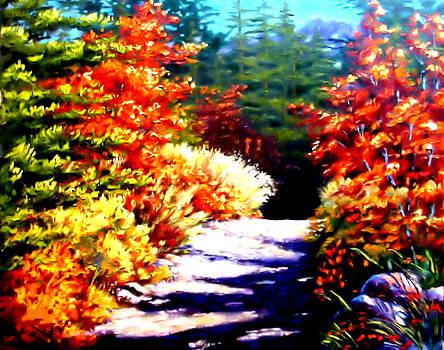 Walk With Me by Karen Conine