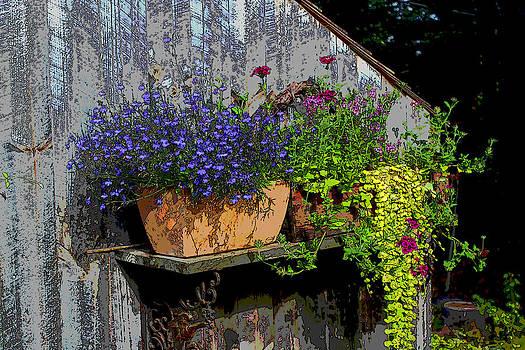 Wall Garden by Bob Whitt