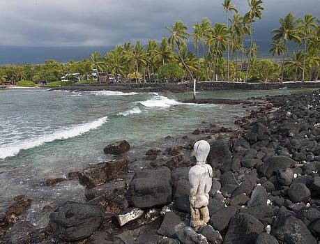 Watching the Bay by Jen Morrison
