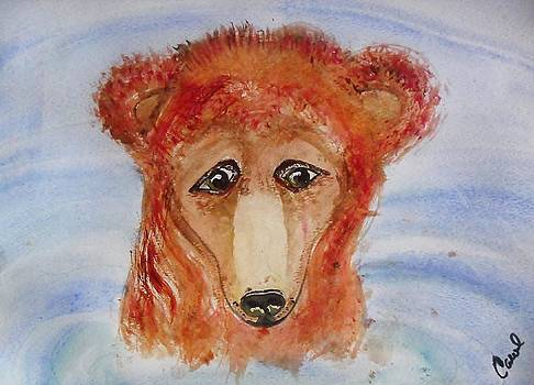Water Bear by Carol Duarte