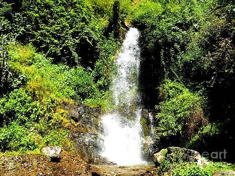 Water Fall by Hari Om Prakash