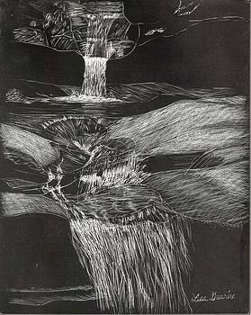 Water Fall NH by Lisa Guarino
