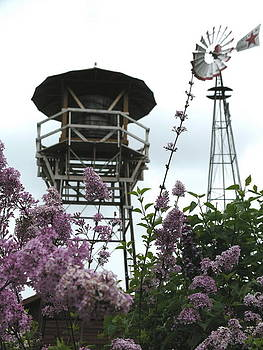 Water Tower Windmill by Peggy Mars