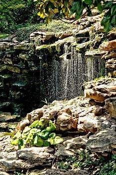Lynnette Johns - Waterfall - HDR