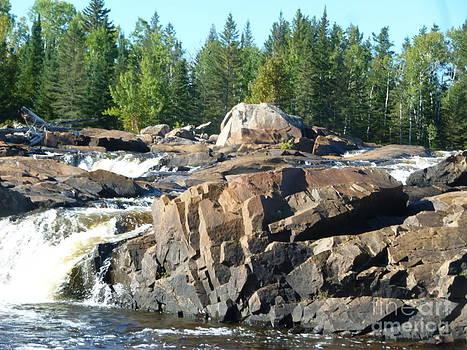 Sue Wild Rose - Waterfall