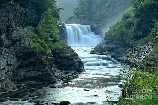 Adam Jewell - Waterfalling In The Genesee