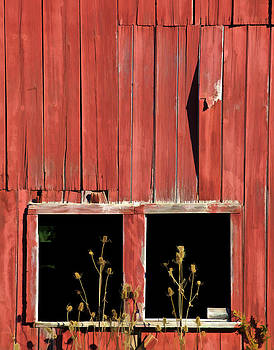 David Letts - Weathered Red Barn Windows of New Jersey