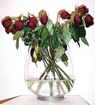 Weeping Roses I by Anna Villarreal Garbis