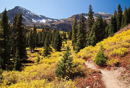 Adam Pender - West Elk Trail