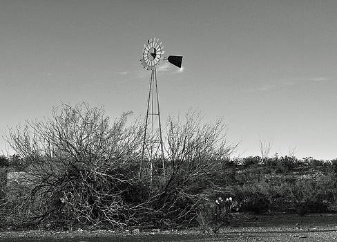 West Texas Windmill by Timothy Johnson