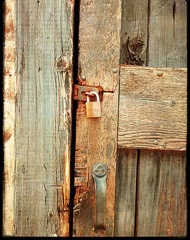 What's Locked Inside by Lynn Wohlers