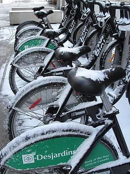 Alfred Ng - wheels with snow