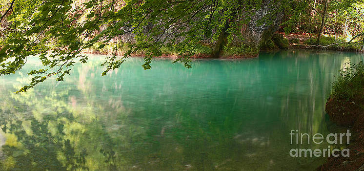 Where Angels Swim by Alfredo Rodriguez