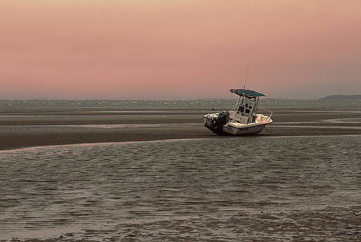 Karol  Livote - Where Did The Tide Go