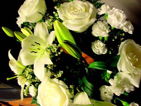White Flowers by Amy Bradley